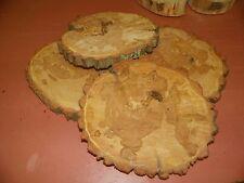 3 Baumscheiben, Holzscheibe, 24-25 cm, Weide