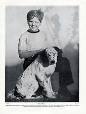 ENGLISH SETTER AND BOY JACKIE WILSON FILM STAR DOG PRINT PAGE FROM 1934