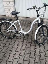 E-Bike Flyer Premium C8, Marathon Plus (Unplattbar) Reifen,Top Gepfegt! 2Akku