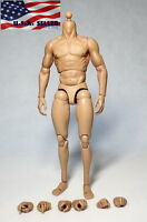 """ZC Toys 1/6 Scale Muscular Male Figure Body for 12"""" Head Sculpt Wolverine ❶USA❶"""
