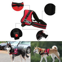 Padded Adjustable Pet Puppy Dogs Non Pull Comfort Soft Walking Vest Harness  Set
