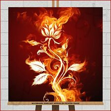 "Fire Flower Rose Framed Box Canvas Print Picture 20""x20"" Red Orange Black Yellow"