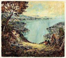 MEIER Signed Vintage 1960's Original Oil Painting AUSTRIAN HOMES ON A LAKE