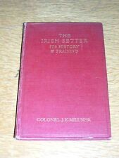 More details for very rare irish setter dog book by millner 1st 1924 illustrated vg condition