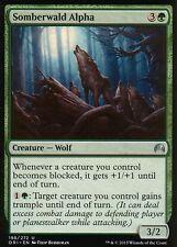 4x somberwald Alpha | nm/m | Magic Origins | mtg