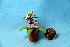Dollhouse Miniature House Plant with Purple Daisies ~ RP0168