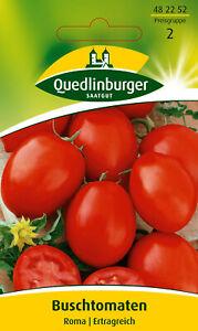 Quedlinburger Saatgut - Buschtomaten Samen - Roma