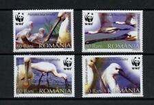 Briefmarken aus Rumänien mit Vögel-Motiv