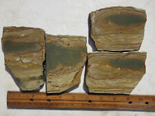 784  PICTURE JASPER SLABS GREAT FOR CABS OR ROCK PAINTINGS. FROM OLD ROCK SHOP