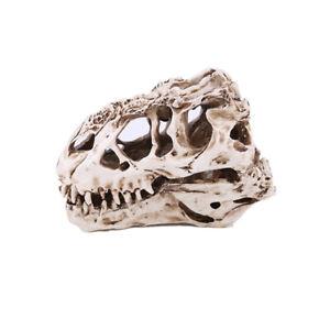 Tyrannosaurus Rex Dinosaur Skull Resin Skull Head Halloween Props Skull Head