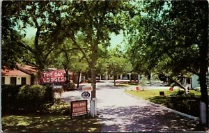 Postcard TX San Antonio The Oak Lodges Motel East of Route 81 1960s K13