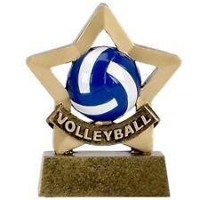 """Mini Star Volleyball  Volleyball Trophy Award"""