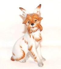 Seltene AUGARTEN WIEN Porzellan - Figur / Hund, Griffon, 1. Wahl, unbeschädigt !