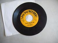 LI'L WALLY harmony boys polka / please believe me JAY JAY RECORDS    45