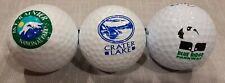 EE. UU. parques nacionales con el logotipo de la pelota de golf de souvenir. Mt Rainer, Lago Cráter, Blue Ridge