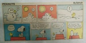 (27) Peanuts Sunday Pages by Charles Schulz from 1977 Size: ~7.5 x 14 inches