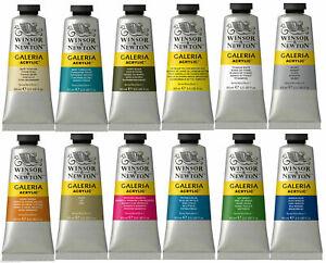 Winsor & Newton Galeria Acrylic Paint 60ml Tube - All Colours Available