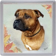 Staffordshire Bull Terrier Coaster No 3 by Starprint - Auto combined postage