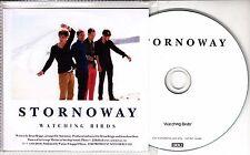 STORNOWAY Watching Birds 2010 UK 1-track promo test CD 4AD