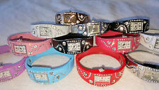 Job lot 24 Ladies Mixed colour diamante Quartz Bangle Watch new Wholesale 2