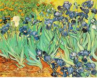 Dream-art Oil painting beautiful flowers nice still life Iris - Van Gogh canvas