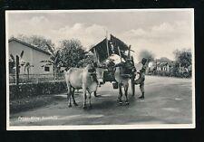 Indonesia SOERABAJA Surabaya Patjar-King  bullock cart c1920/30s? RP PPC