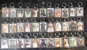 DOG BREED KEY RINGS QUALITY ACRYLIC DOUBLE SIDED PHOTO KEY RINGS 33 BREEDS