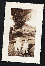 Vintage Antique Photograph Man With Little Boy Sitting With Adorable Puppy Dog