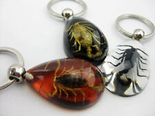 12 pcs fashion scorpion mixed color drop design key-chain