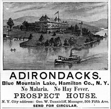 ADIRONDACKS PROSPECT HOUSE BLUE MOUNTAIN LAKE NEW YORK NO MALARIA OR HAY FEVER