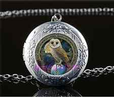 Wicca Owl Photo Cabochon Glass Tibet Silver Chain Locket Pendant Necklace