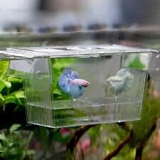 Aquarium Fish Tank Guppy Double Breeding Breeder Rearing Trap Box Hatchery New*