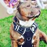 Big Dog Harness No Pull Adjustable Pet Reflective Oxford Soft Vest for Large