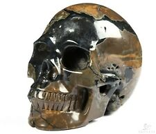 "5.0"" DINOSAUR EGG AGATE Carved Crystal Skull, Realistic, Crystal Healing"