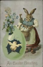 East Fantasy - Grandma Rabbit Clothes & Eyeglasses c1910 Postcard - Winsch