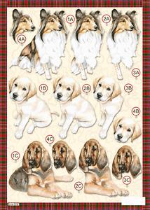 Craft UK A4 Die Cut Decoupage Sheet Line 616 - DOGS Collie Labrador Bloodhound