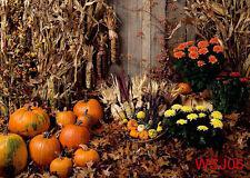 Halloween Pumpkin Vinyl Photography Backdrop Background Studio Props 5x3ft WSJ06