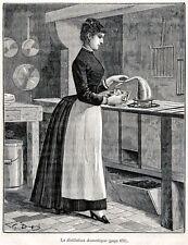 DISTILLAZIONE DOMESTICA. Distilleria.Alcool. Arti e Mestieri.+ Passepartout.1880