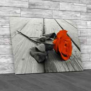 Single Rose On Wood Orange Canvas Print Large Picture Wall Art