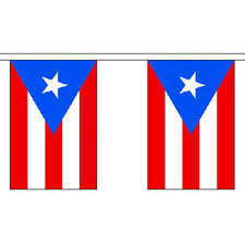 """Puerto Rico Bunting 3m Long With 10 Flags 9""""x6"""" Party Decoration"""