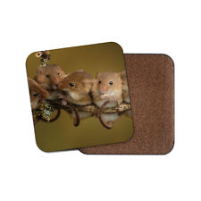 Cute Field Mice Coaster - Mouse Rodent Rat Baby Animal Wild Cool Fun Gift #14597