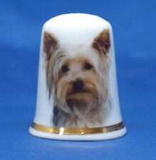 Birchcroft China Thimble -- Yorkshire Terrier Dog with Free Dome Gift Box