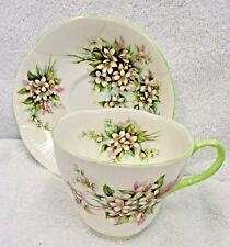 Royal Albert Blossom Time Series Orange Blossom  Cup and Saucer