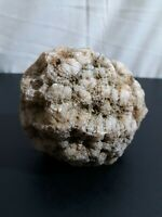 Rocks, fossils ,minerals, crystals , 2 lb white geode/rattles