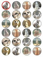 X24 MEERKAT CUP CAKE TOPPERS DECORATIONS ON EDIBLE RICE PAPER
