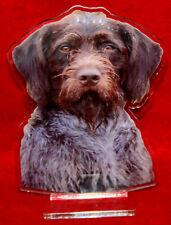 statuette photosculptée 10x15 cm chien drahthaar 2 dog hund perro cane