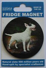Bull Terrier - Dog - Fridge Magnet - Welsh Slate