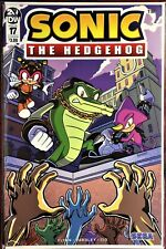SONIC The HEDGEHOG Comic Book IDW #17-B  May 2019 Bagged & Boarded MINT