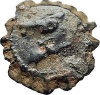 DEMETRIOS I Soter RARE R3 Ancient Seleukid Greek Coin HORSE ELEPHANT i75514