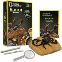 NATIONAL GEOGRAPHIC Real Bug Dig Kit 3 Genuine Bugs Specimens Learning Guide